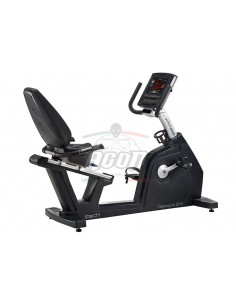 RECUMBERT Diamond D41