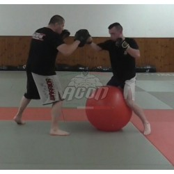 PAD WORK & STABILITY BALL...