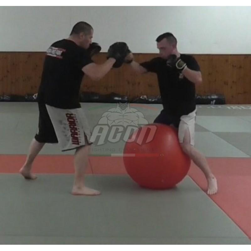PAD WORK & STABILITY BALL PER LE MMA