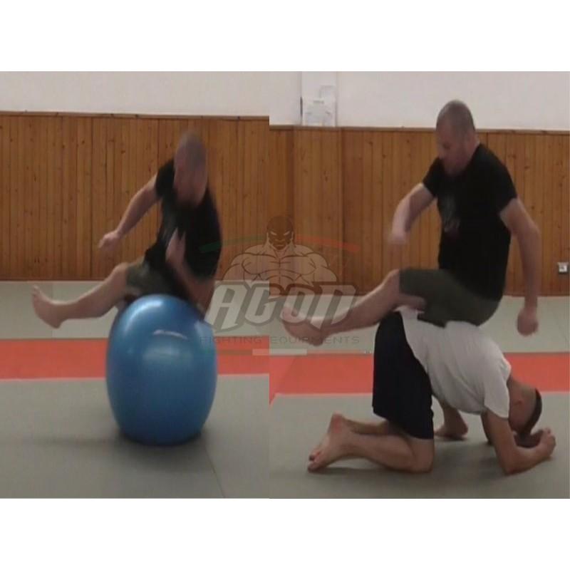 STABILITY BALL PER MMA E GRAPPLING...