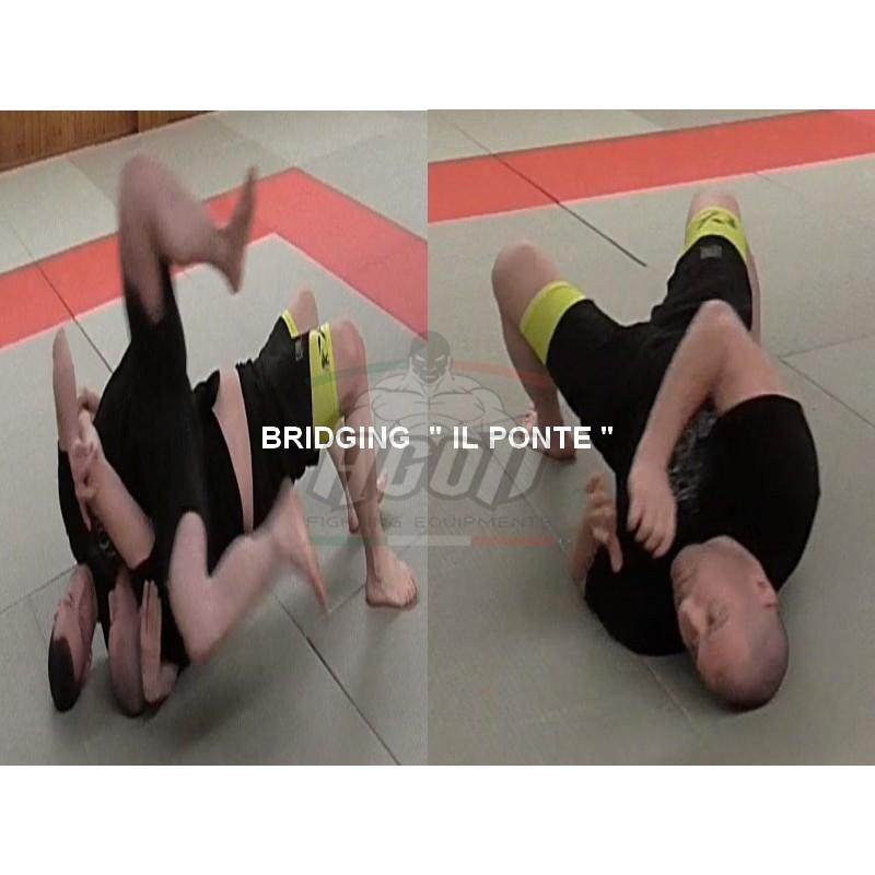 """BRIDGING """"IL PONTE """" PER MMA..."""
